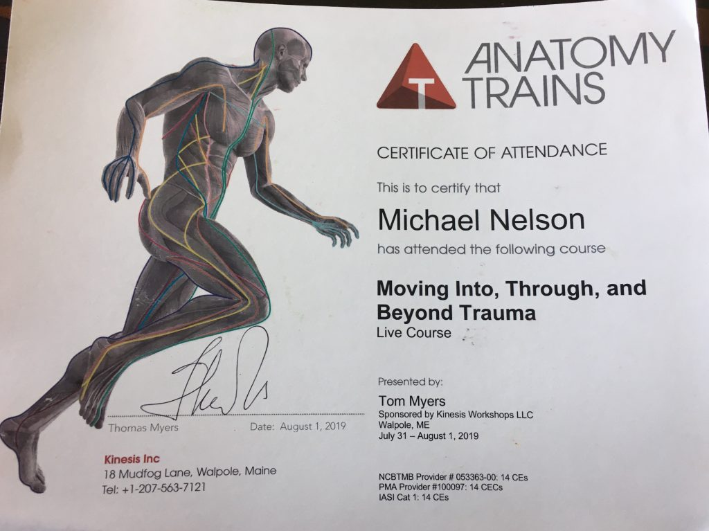 anatomy trains Archives - Mike T Nelson