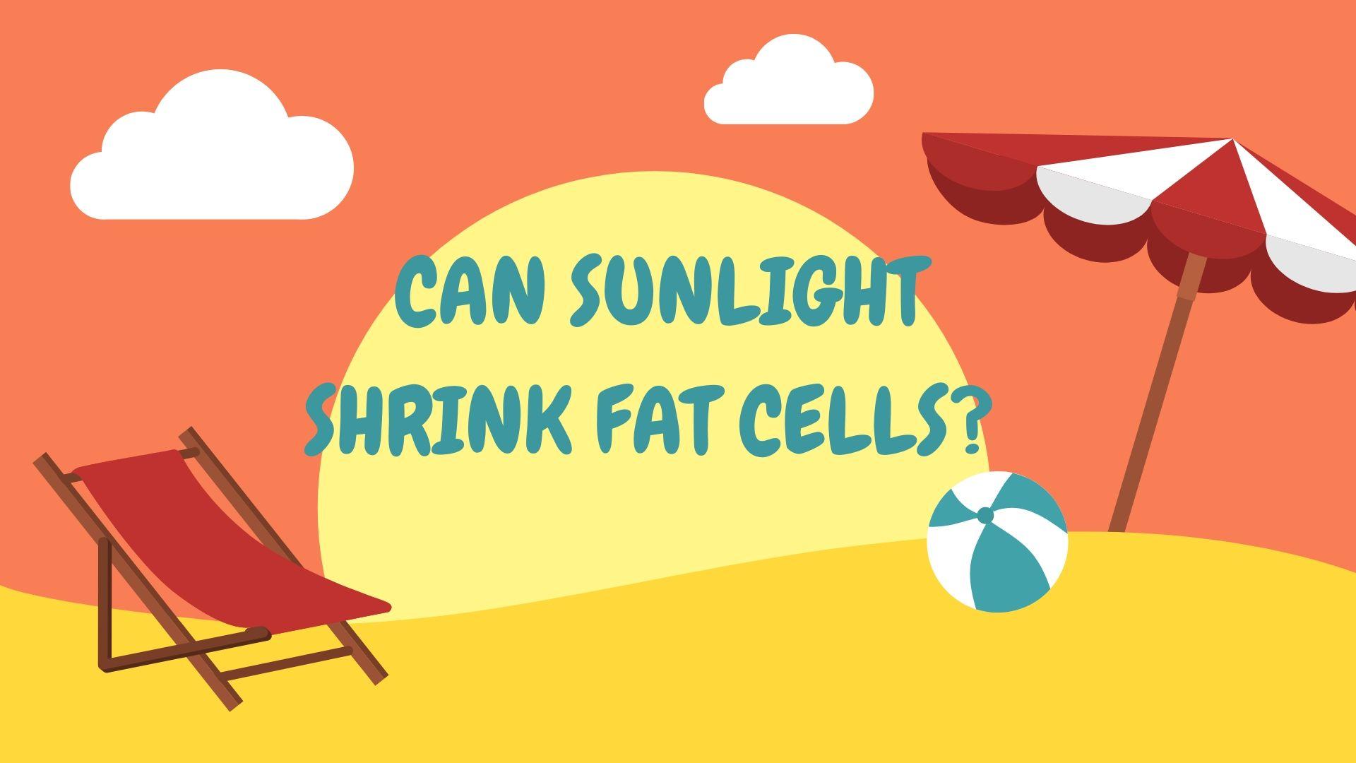 shrink fat cells
